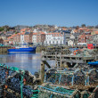 Whitby North Yorkshire looking through lobster pots — Foto de Stock