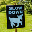 Slow down, sheep — Stock Photo