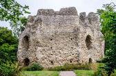 Odiham castle hampshire UK — Stock Photo