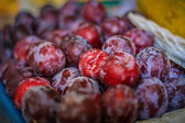 Bunch of Plums at a farmer's market — Stock Photo