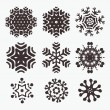 Snowflake set — Stock Vector