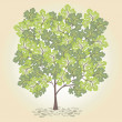 Tree with green leafage. Vector. — Stock Vector