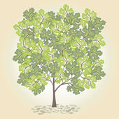 Tree with green leafage. Vector. — Stock vektor