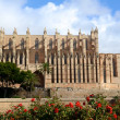 Stock Photo: Katholische Kathedarale in Palma