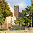 Katholische Kathedarale in Palma — Stock Photo #35345125