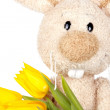 Easter bunny holwing tulips — Stock Photo