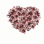 Beautiful flowers heart — Stock Photo
