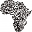 Africa in a animal  camouflage — Stock Vector