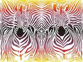 Zebra abstract pattern background — Stock Vector