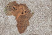 Fundo da chita africana — Vetorial Stock