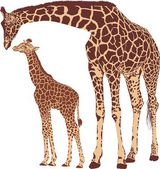 Giraffe mother with cub — Stock Vector