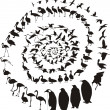 Waterfowl birds in a spiral — Stock Vector