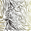 Tiger camouflage background with head — Stock Vector #37665011