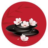 Vector zen stones and cherry flowers — Stock Vector