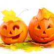 Two orange halloween pumpkins Jack O Lanterns — Stock Photo #13416380