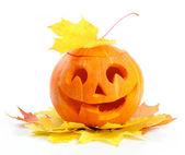 Halloween pumpkin Jack O'Lantern — Stock Photo