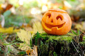 Halloween scary pumpkin in autumn forest — Photo