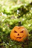 Strašidelné halloween dýně v podzimním lese — Stock fotografie