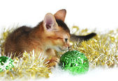 Cute kitten with christmas balls — Stock Photo
