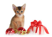 Cute kitten with christmas balls and gift box — Stock Photo