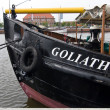 Goliath — Stock Photo #40274531