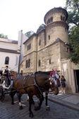 Pferde vor der Synagoge — Stock Photo