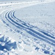 Nordic skiing tracks - Stock Photo