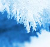 Frosty snow closeup macro — Stock Photo