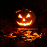 Halloween pumpkin in dark garden — Stock Photo #32088033