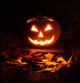 Halloween pumpkin in dark garden — Stock Photo