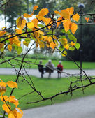 Elderly people in autumn park — Stock Photo