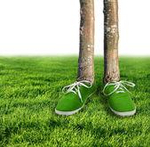 Green carbon footprint concept — Stock Photo