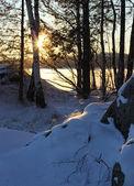 Winter sunset lakeshore — Stock Photo