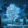 Illuminated tree winter garden snowfall fantasy — Stock Photo #39947309