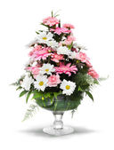 Gerber daisy arrangement — Stock Photo