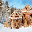 Gingerbread cottages in snowy winter scenery — Stok fotoğraf #51669311