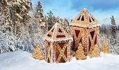 Gingerbread cottages in snowy winter scenery — Stock Photo