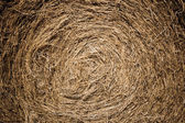 Straw bale detail — Stock Photo