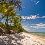 Deserted tropical beach — Stock Photo #26543565