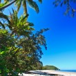 Beautiful deserted tropical beach — Stock Photo #29503023