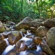 Flowing water in a rocky stream — Stock Photo