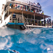 View from the water of a tourist boat — Stock Photo #30094209