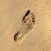 Footprint in the sand. — Stock fotografie