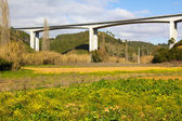 Elevated highway viaduct over a grassy field — Stock Photo