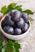 Fresh plums — Stock Photo