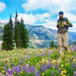 Male hiker walking the trail in the mountains with  wild flowers in purple  — Stock Photo