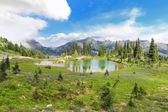 Mountain lake with green beautiful landscape near Mt. Ranier. Naches Peak. — Stock Photo