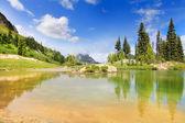 удивительное горное озеро с ярко-зеленого цвета, золотой песок и сосновые деревья. — Стоковое фото