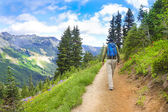 Male hiker walking up the trail in the mountains near Mt. Rainier. — Stock Photo