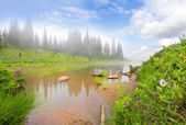 Mountain lake with fog, rock, flowers and trees. — Stock Photo